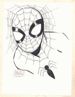 Spider-Man Bust Commission - 2017 Signed Comic Art