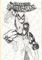 Spider-Man Coming at You Commission - Signed Comic Art