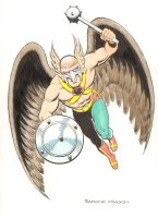 Hawkman Color Commission - Signed Comic Art